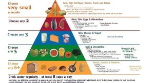 FoodPyramid2006_large[1]